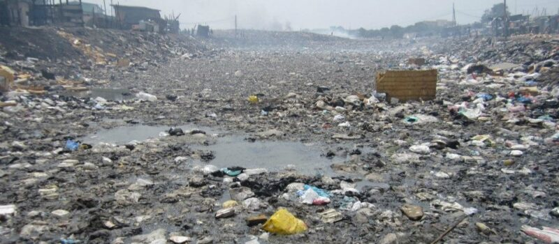 Our Modern Waste Land: Food, Facts and the Future