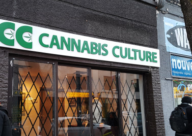 A Dispensary in Montréal. Photo: Flickr